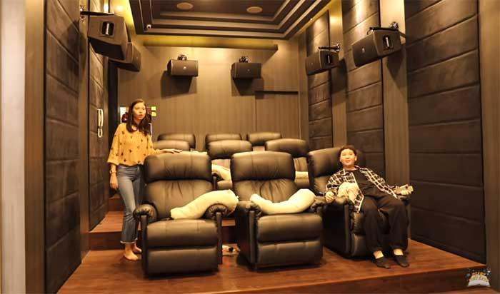 Privat bioskop artis